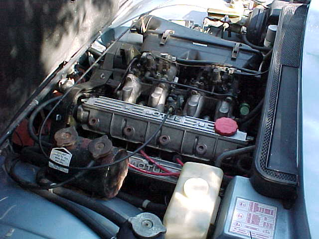 Engine bay on arrival, well lubricated